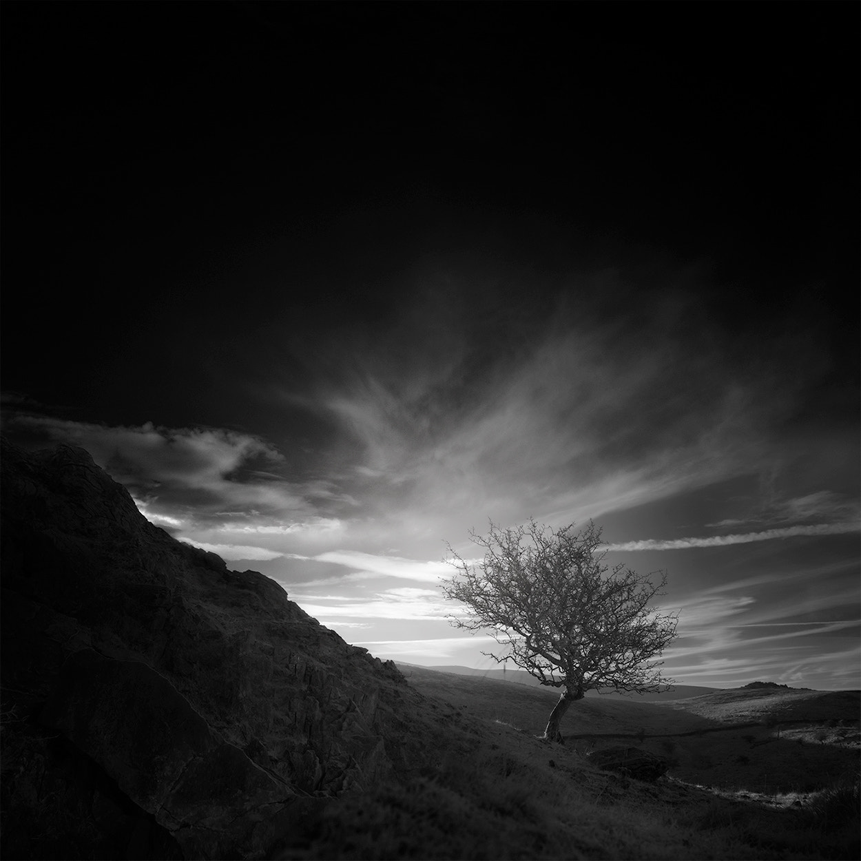 Photograph ѱ out of darkness comes creation by Andy Lee on 500px