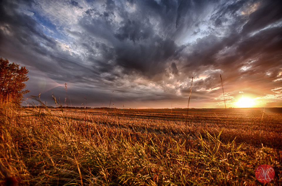 Photograph Showers on the way by Kasia Sokulska on 500px