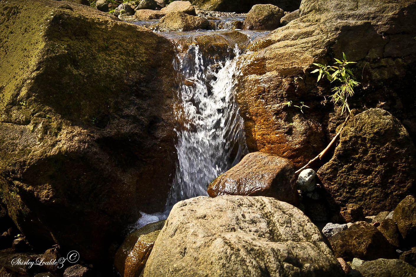 Photograph Flow by shirleybelles  on 500px