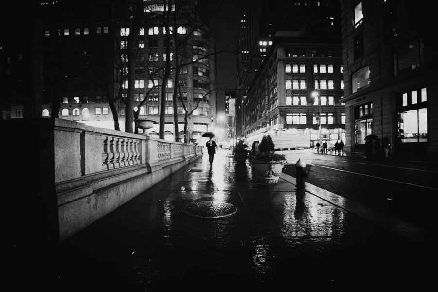Photograph Noir by Vivienne Gucwa on 500px