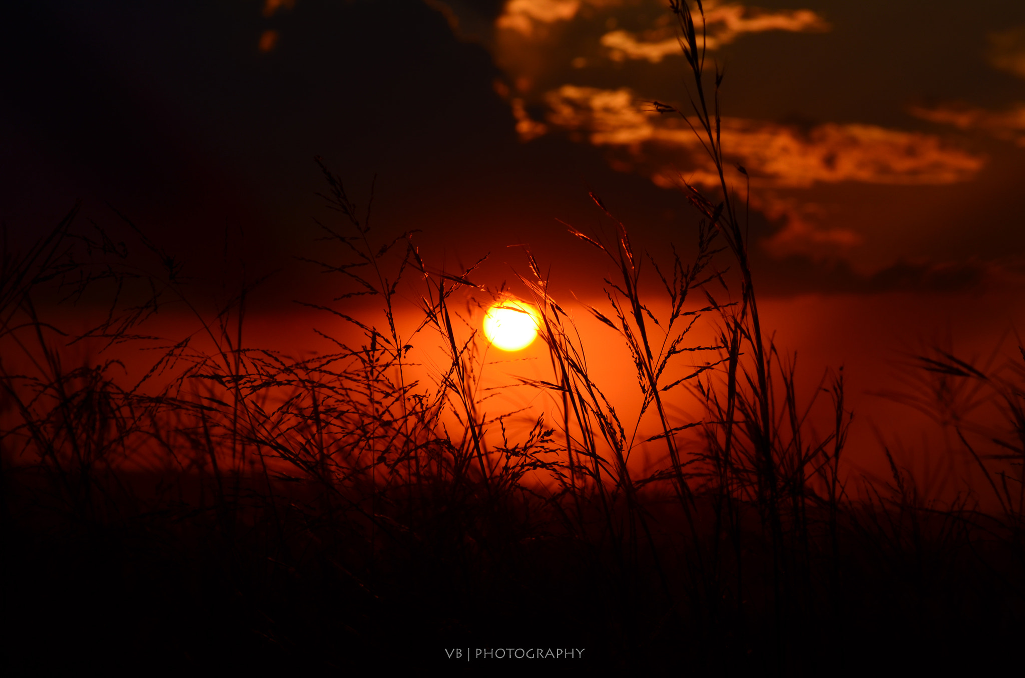Photograph Trapped Sun by Jared van Bergen on 500px