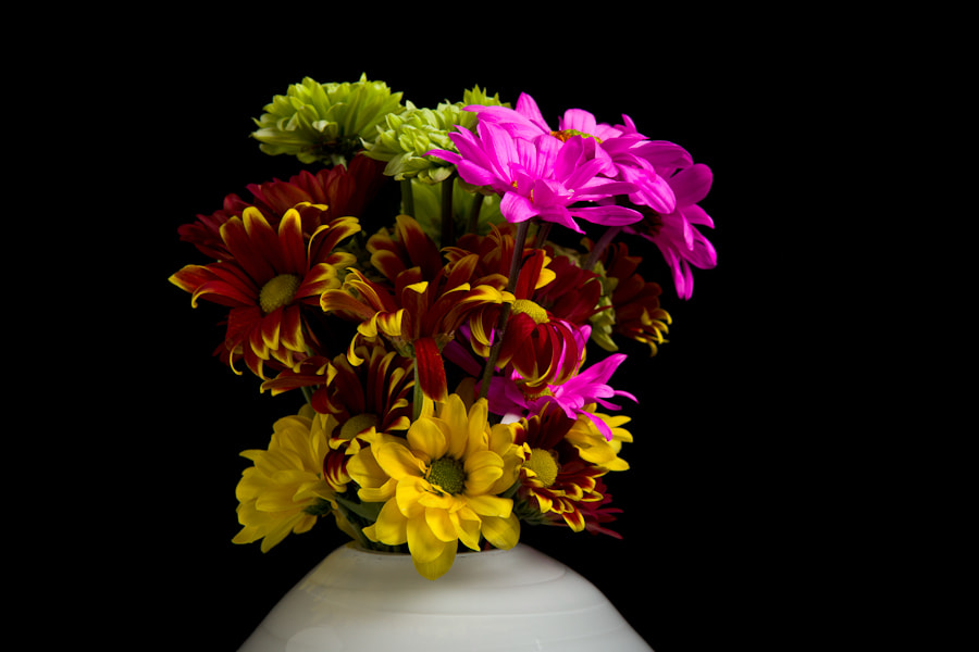 """My mother-in-law brought us some fresh flowers today. My first thoughts were the stunning photographs from <a href=""""http://500px.com/magdaindigo"""">Magda's</a> work."""