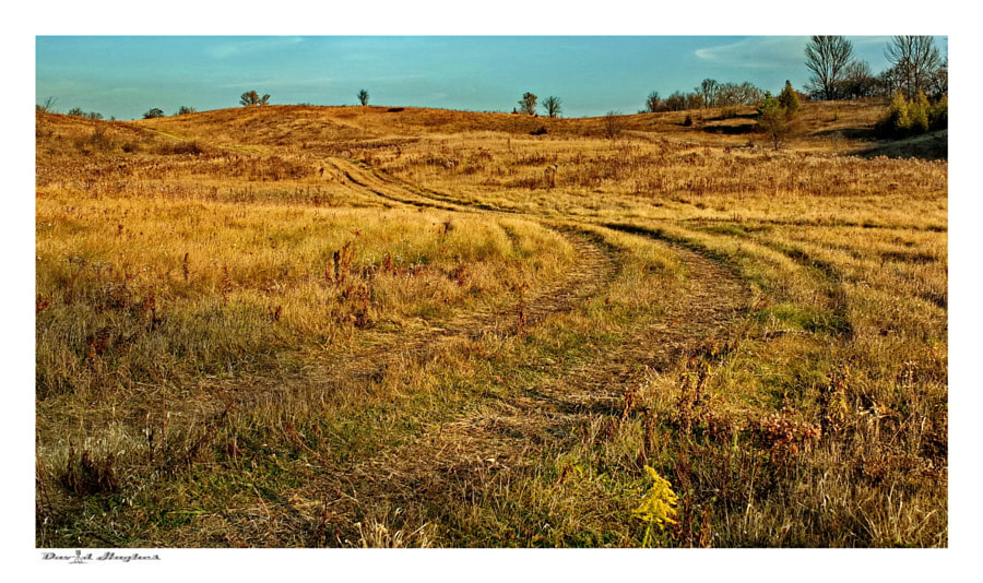 Farm Trails II