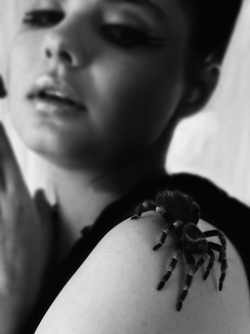Photograph Celina and the spider 3 by Kim Sørensen on 500px
