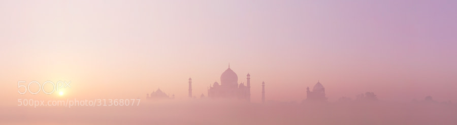 Photograph Taj emerges by Simon Christen on 500px