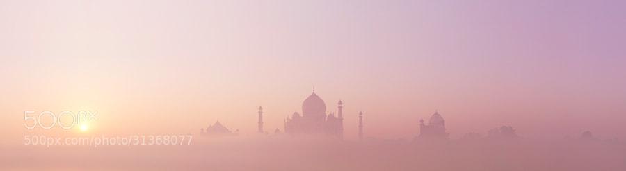 Photograph Taj emerges by Simon Christen on 500px