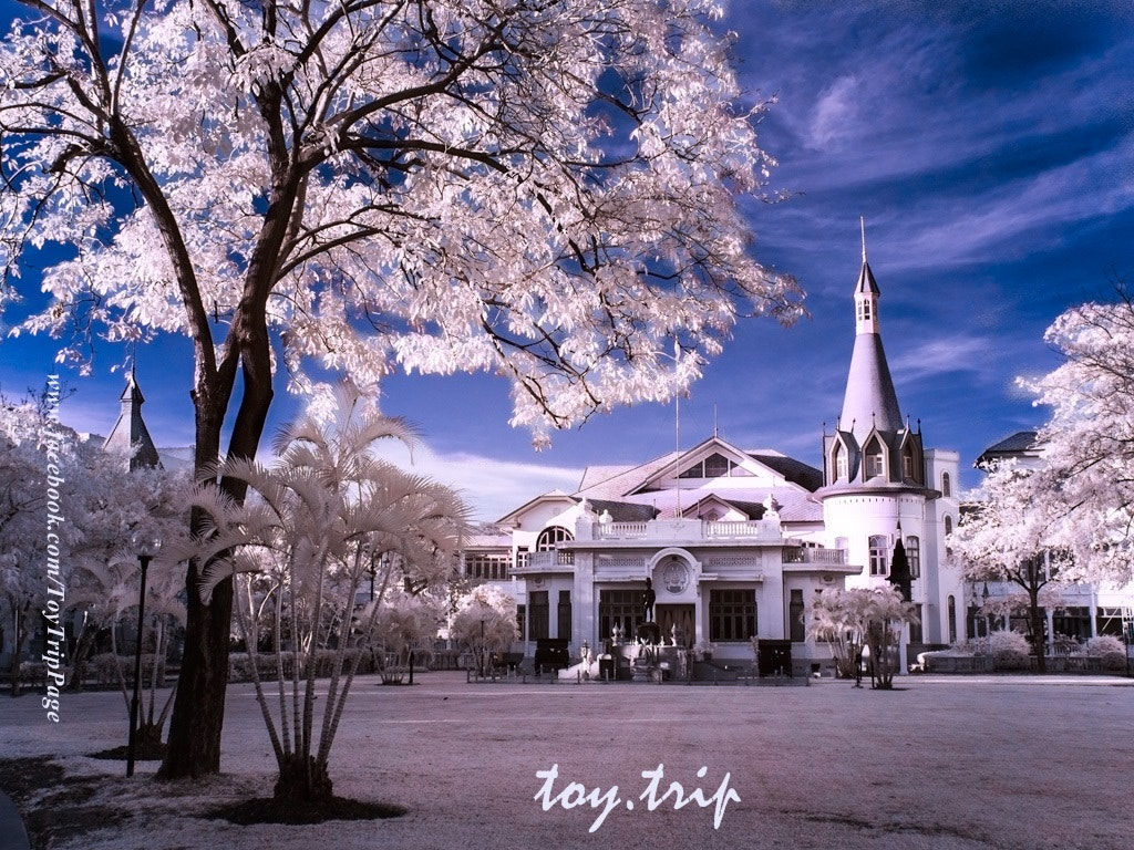 Photograph The Old Palace by Toy Trip on 500px