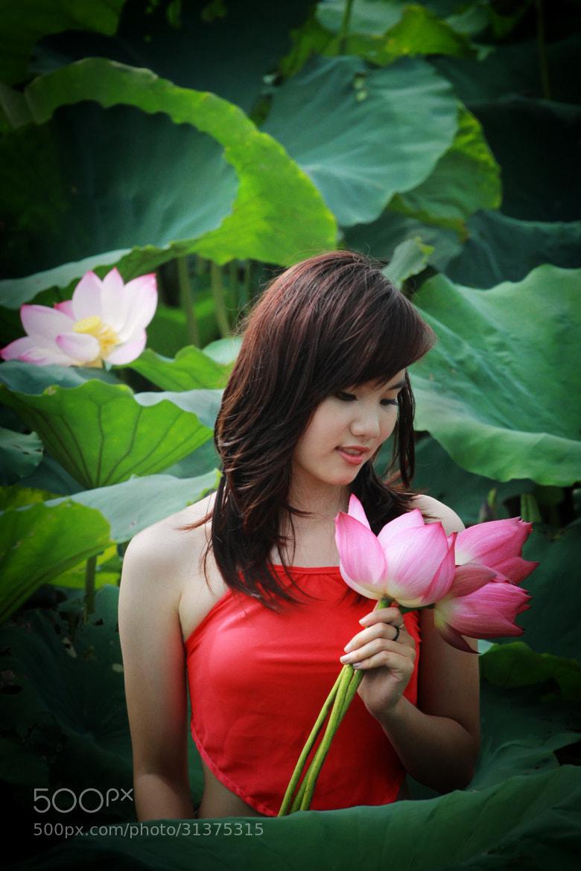 Photograph Lotus Season 2 by Ca Long on 500px