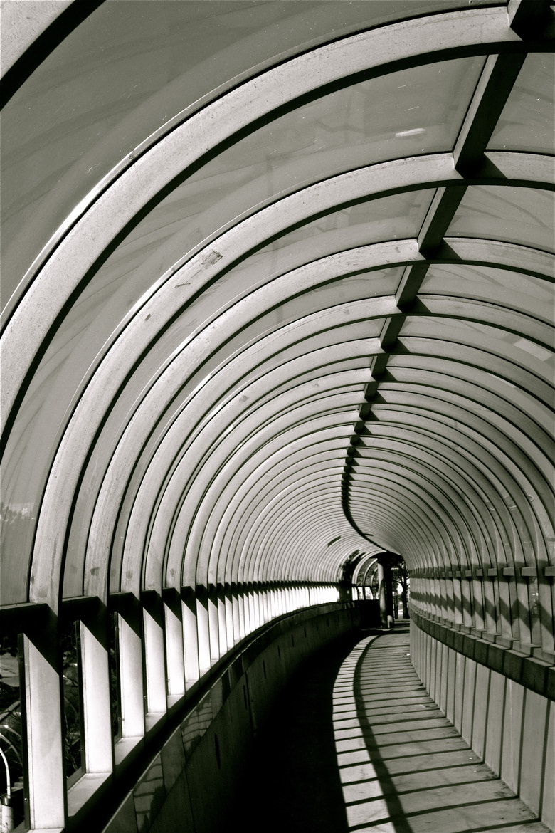 Photograph Tunnel Vision by Kevin Haggith on 500px