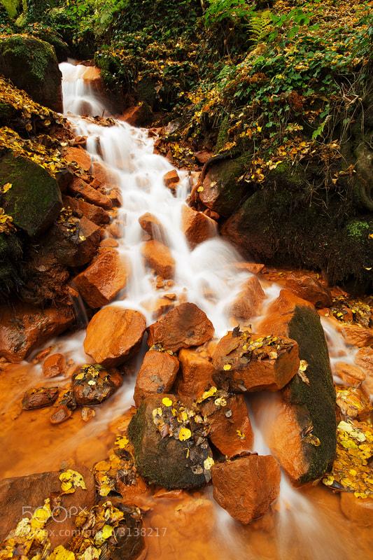 Photograph Red Creek by Martin Rak on 500px