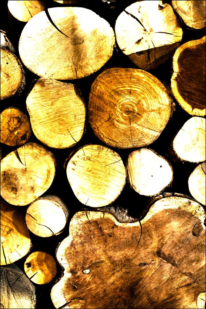 Photograph Log pile by Robert Dray on 500px