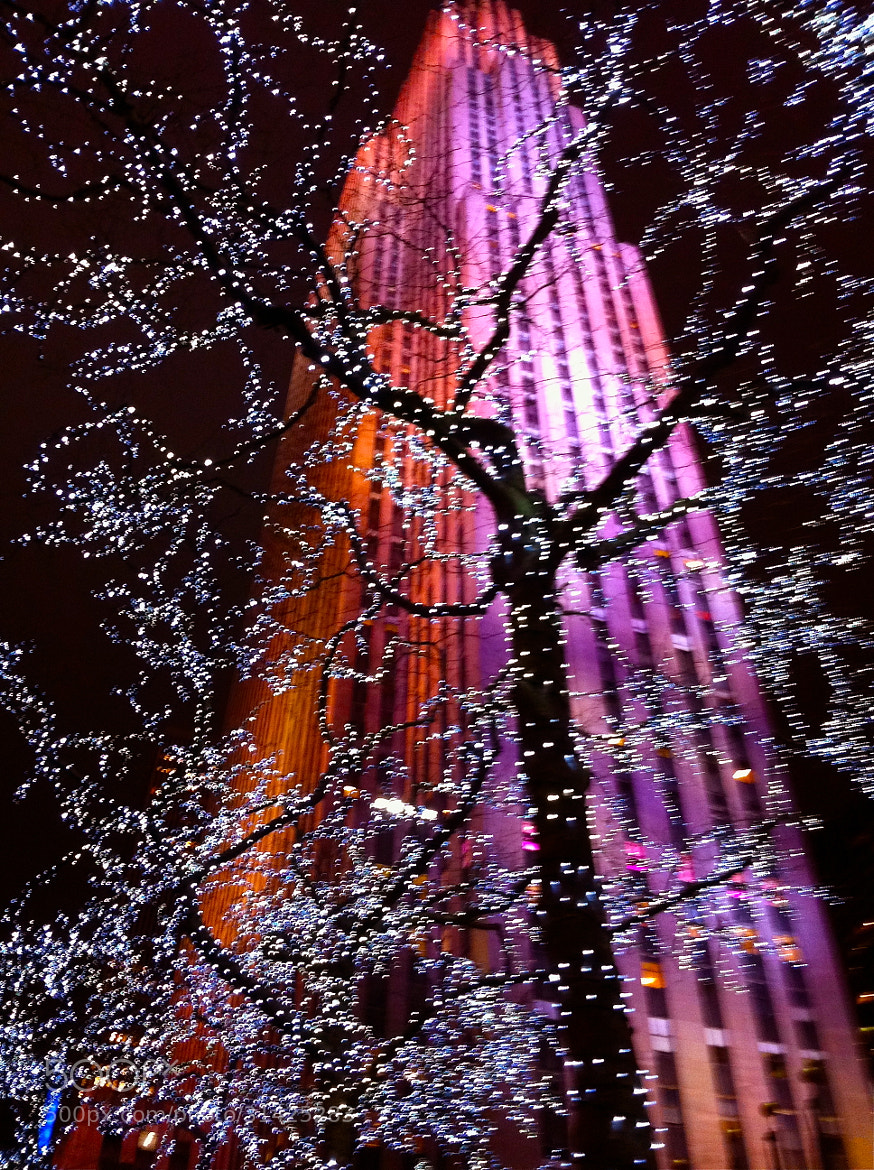 Photograph Rock Center Tree by Becca Thompson on 500px