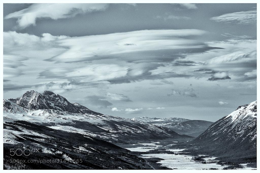 Photograph Cerro Castor. Ushuaia. Argentina. by Kot Basilio on 500px