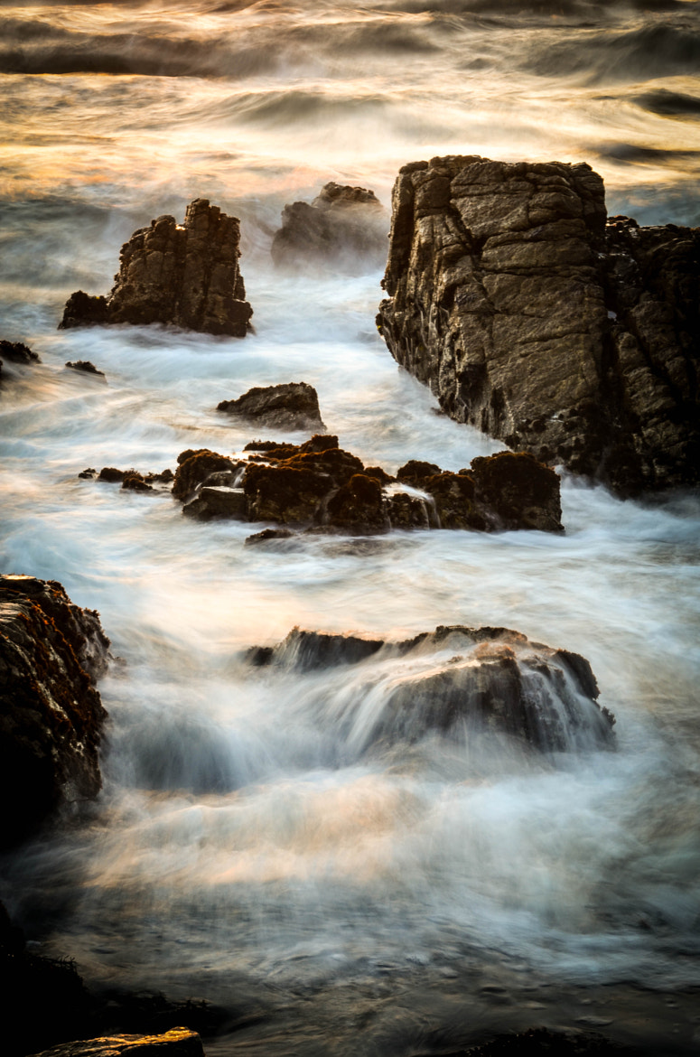 Photograph The Magic of the Ocean by Alison Williams on 500px
