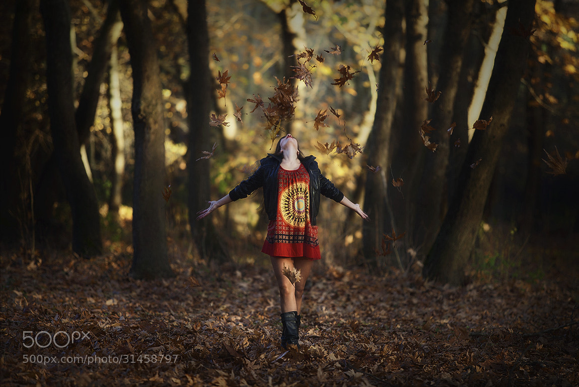 Photograph Dances with leaves by Christos Lamprianidis on 500px