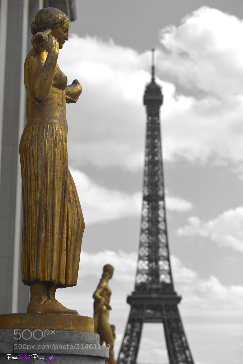 Photograph Watching over Paris by Paul SKG Photography on 500px