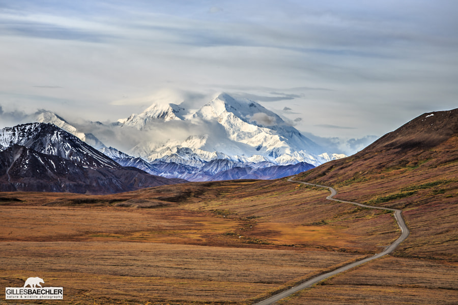 Photograph Road to Denali by Gilles Baechler on 500px