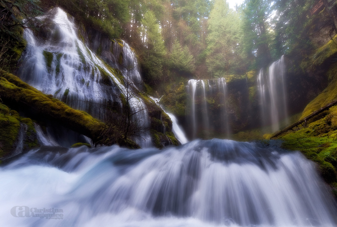 Photograph Panther Creek Falls by Christina Angquico on 500px