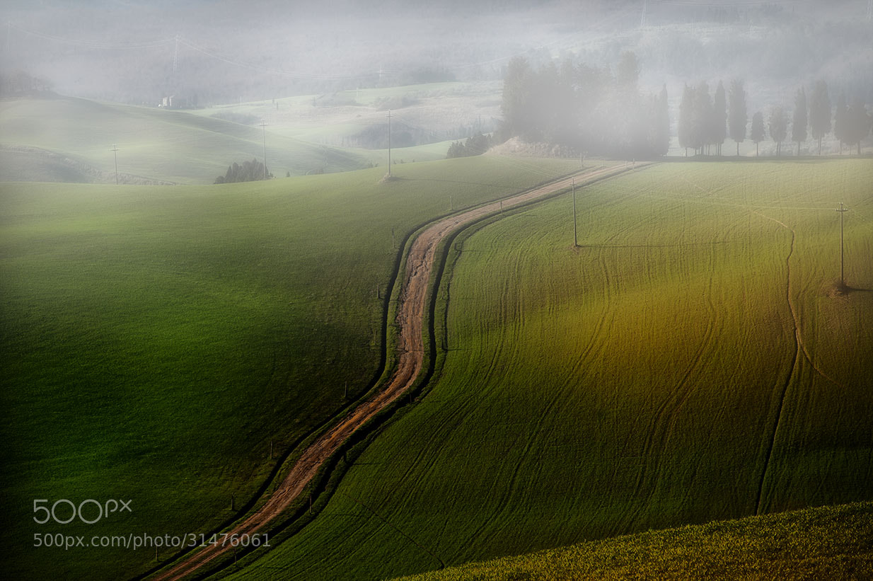 Photograph Road by Roberto Paglianti on 500px