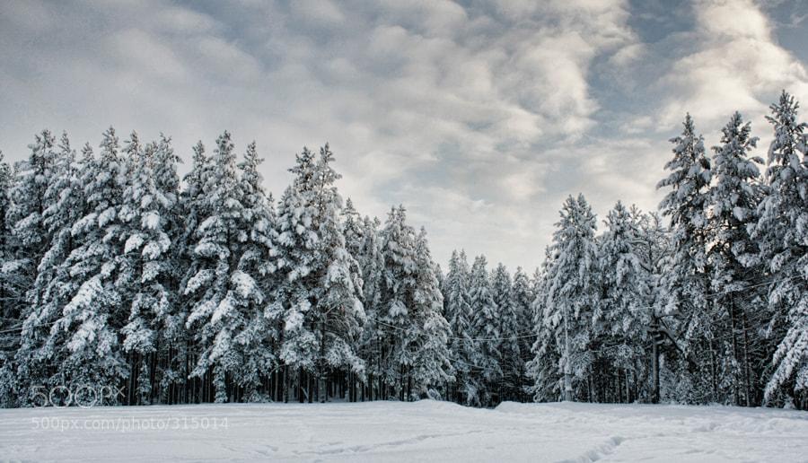 Photograph Karelia by Petr Jakovlev on 500px