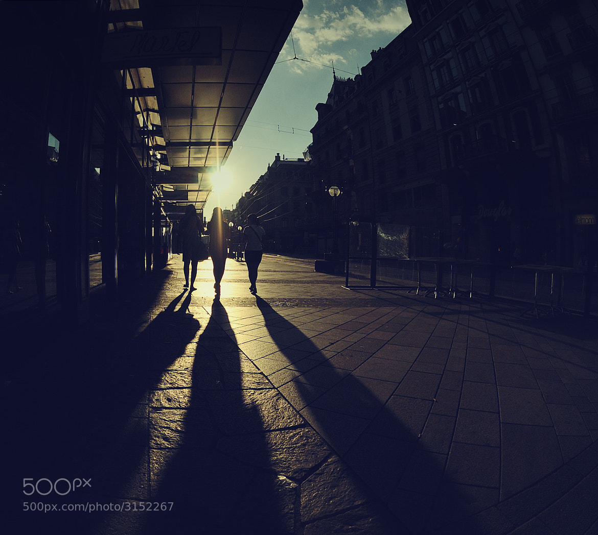 Photograph Shadows by Rae Paladin on 500px