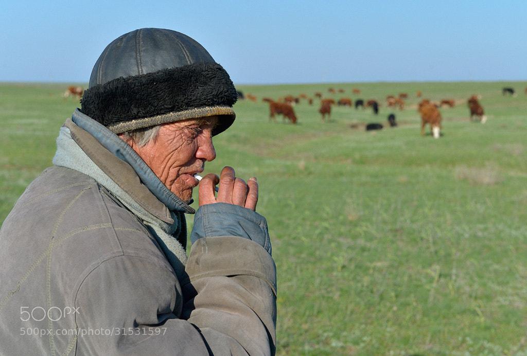 Photograph Shepherd in Kalmykia. by Igor Shpilenok on 500px