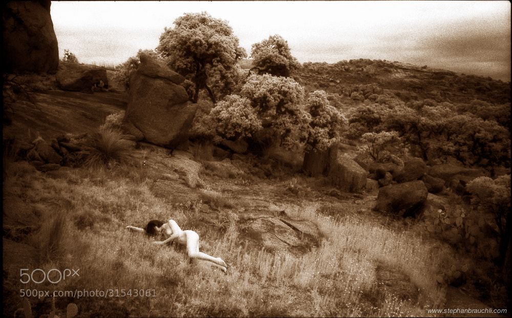 Photograph Field of dreams by Stephan Brauchli on 500px