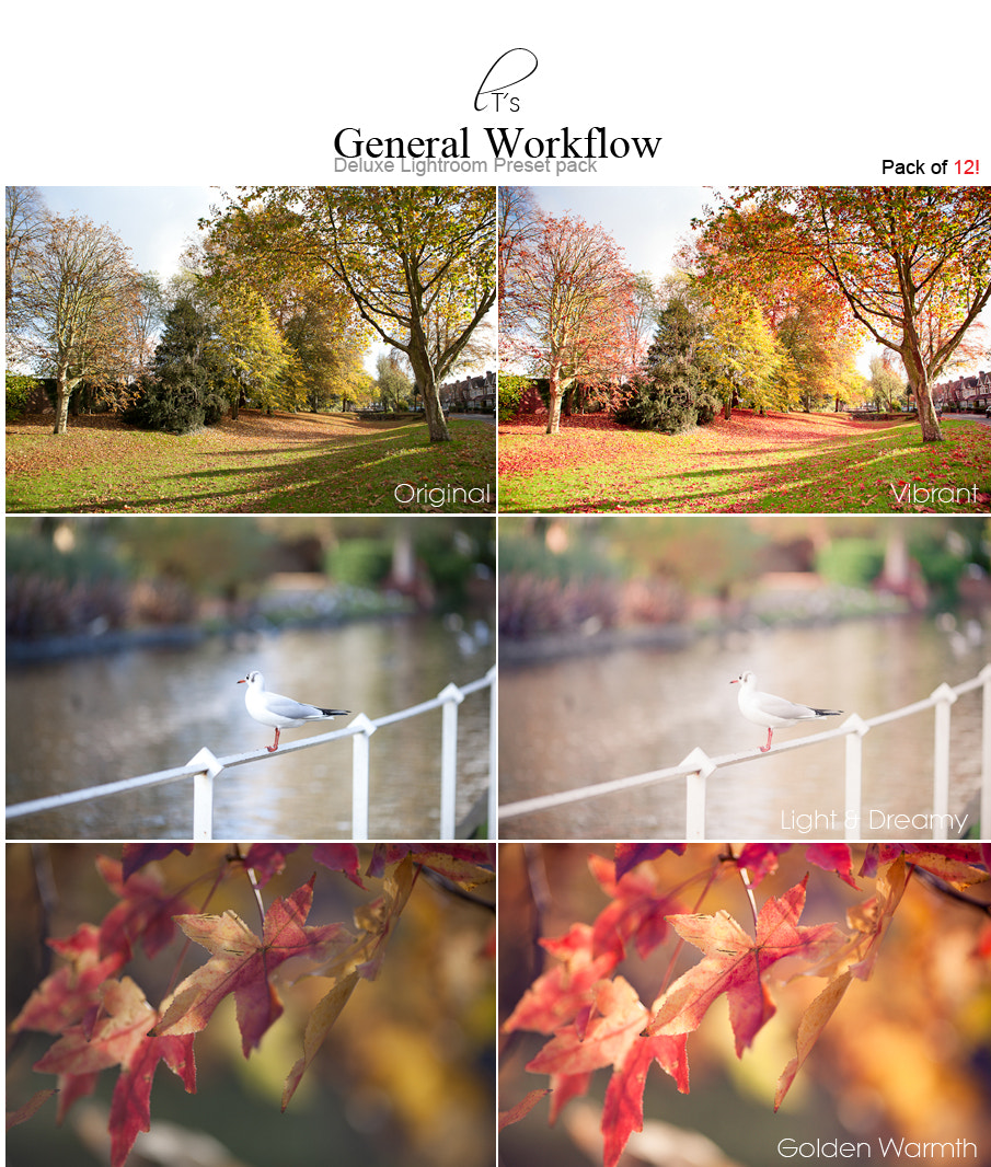 Photograph General Workflow Lightroom Presets - 12 pack! by Lady Tori  on 500px