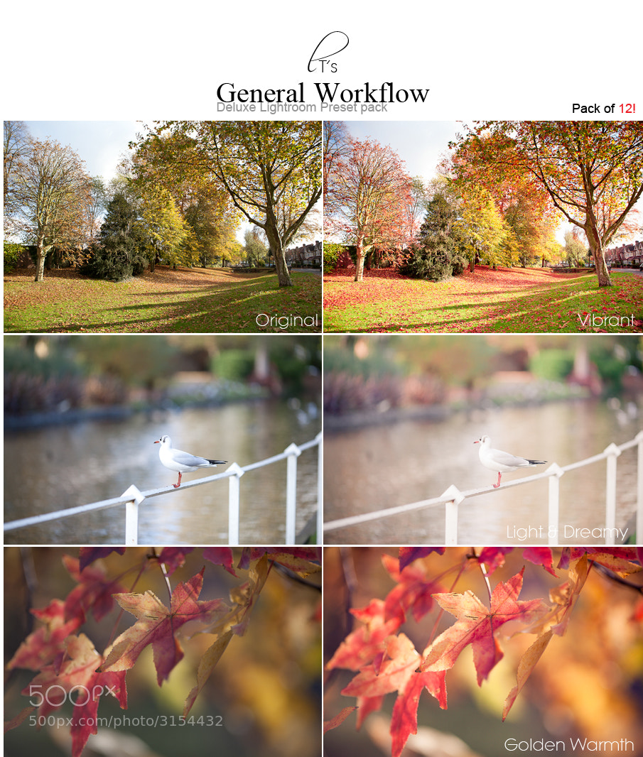 Photograph General Workflow Lightroom Presets - 12 pack! by Tori  on 500px