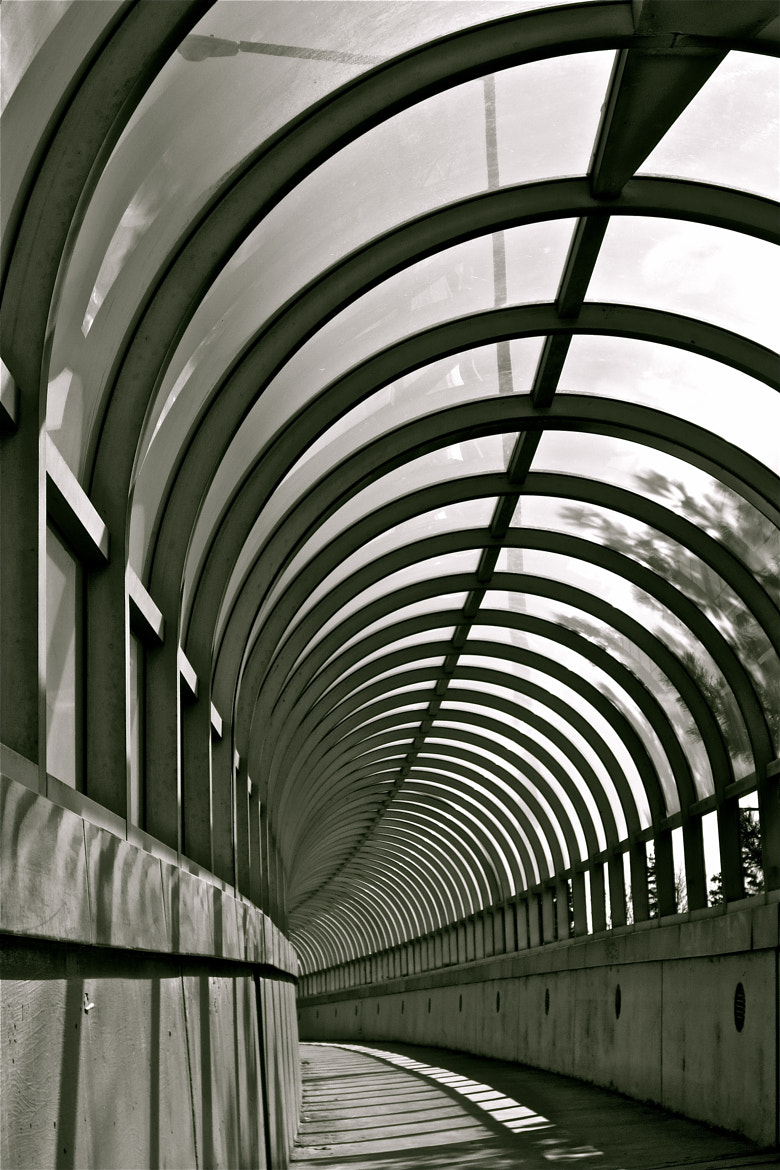 Photograph Tunnel Vision Part Deux by Kevin Haggith on 500px