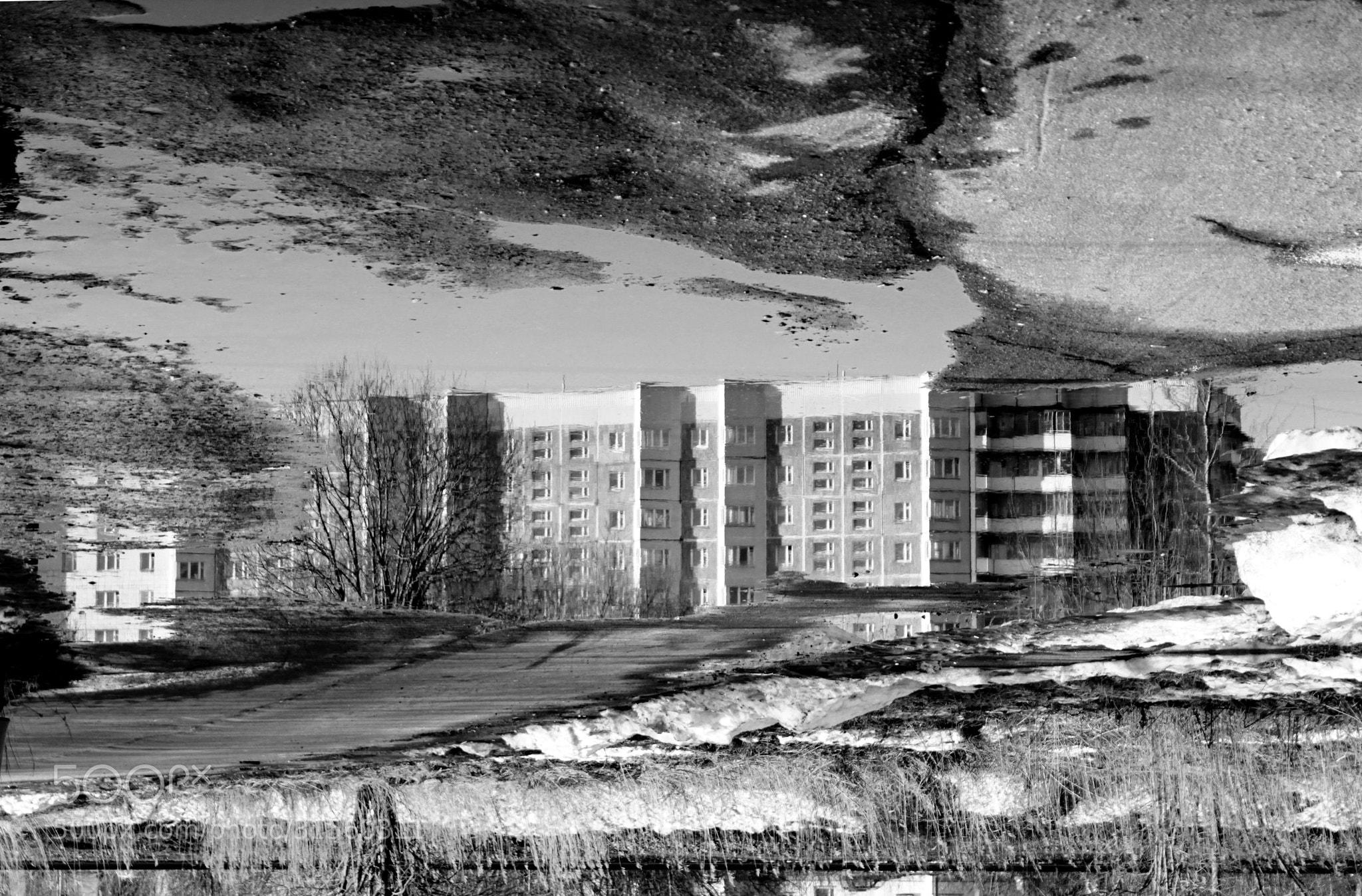 Photograph Untitled by Arisha Malygina on 500px
