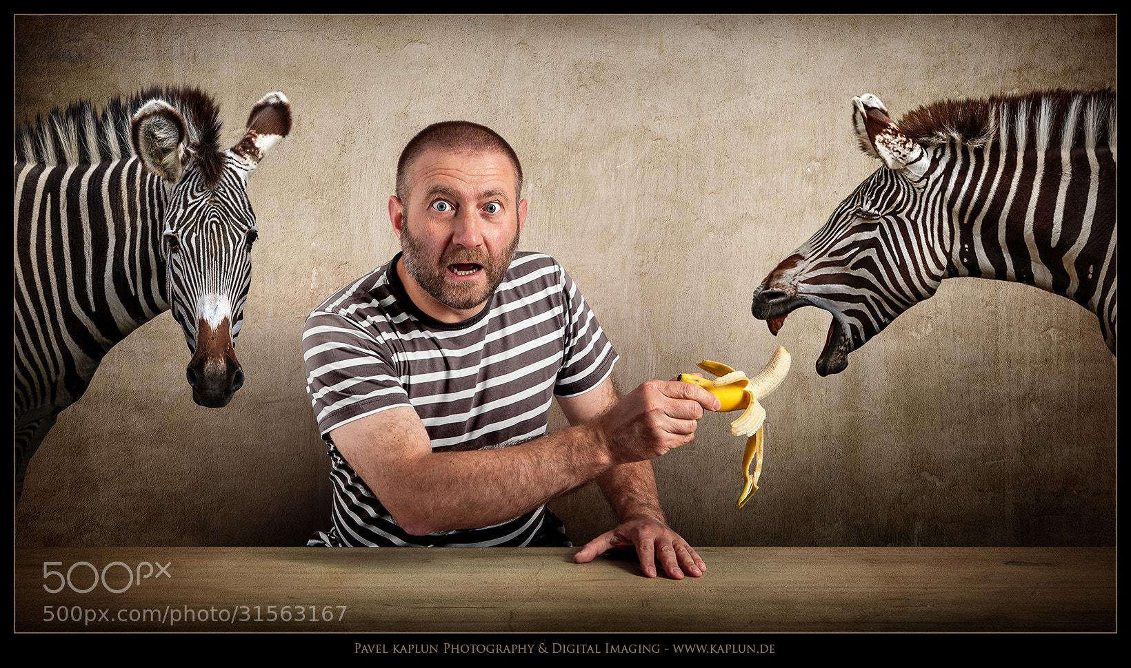 Photograph Drei mit den Streifen und eine Banane by Pavel Kaplun on 500px