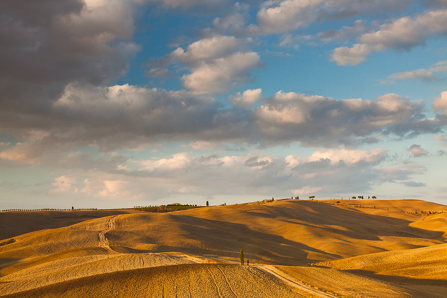 Photograph Val d'Orcia by Claudio Coppari on 500px