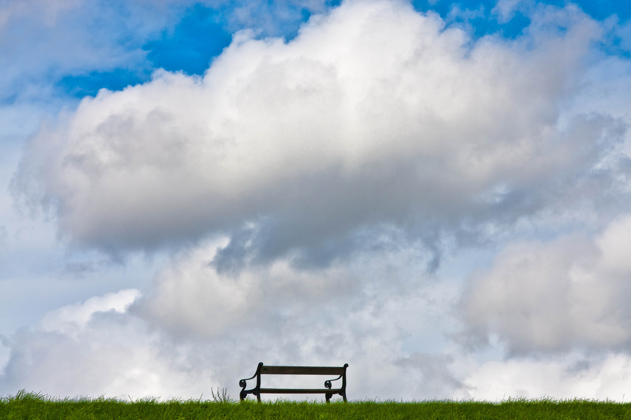 Photograph The bench's hat by María José Torres on 500px