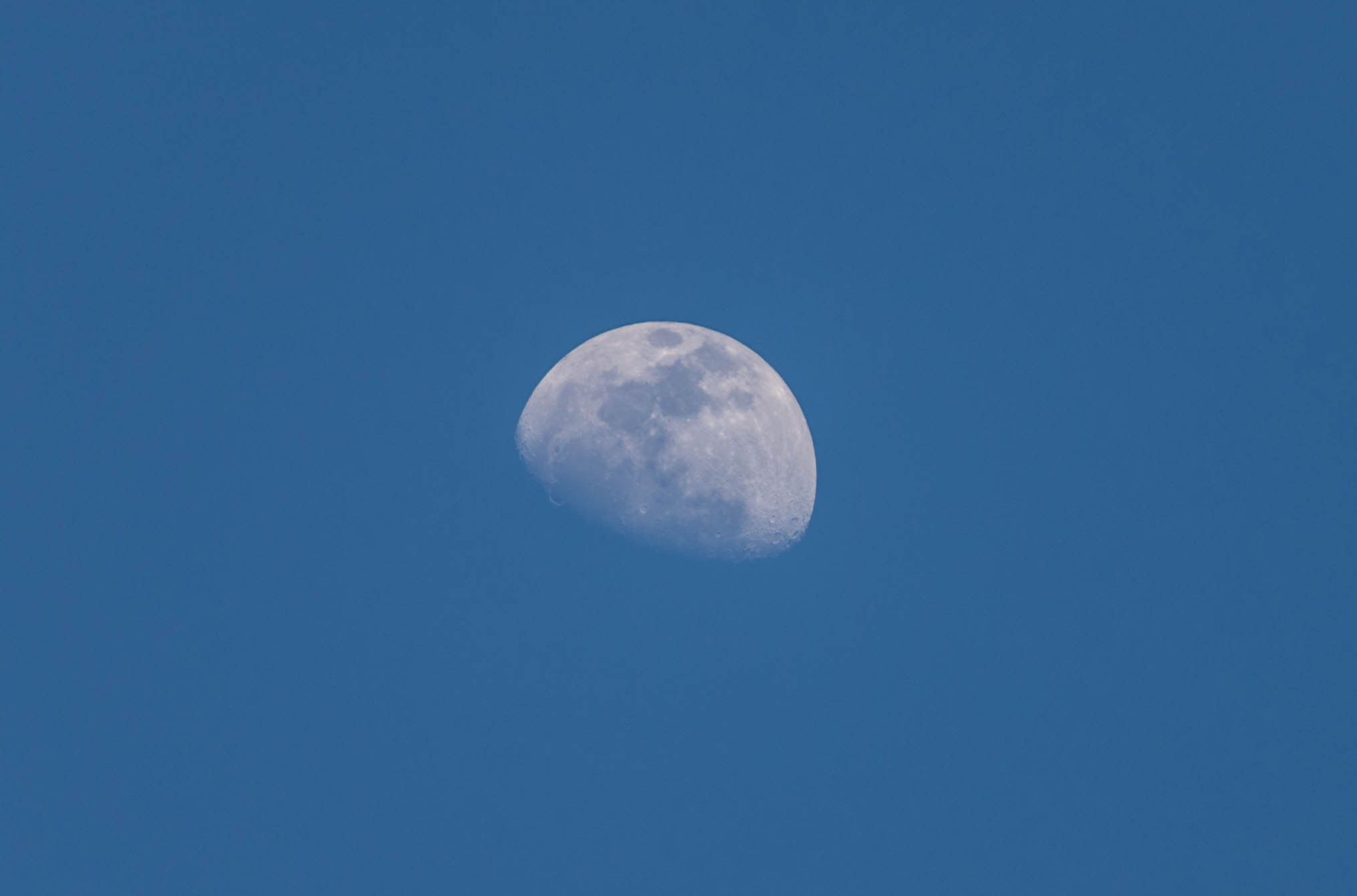 Photograph The afternoon Moon by Deepak Dhamuria on 500px