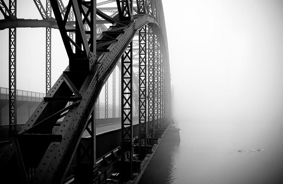 foggy day by Jennifer Vonundzu on 500px.com