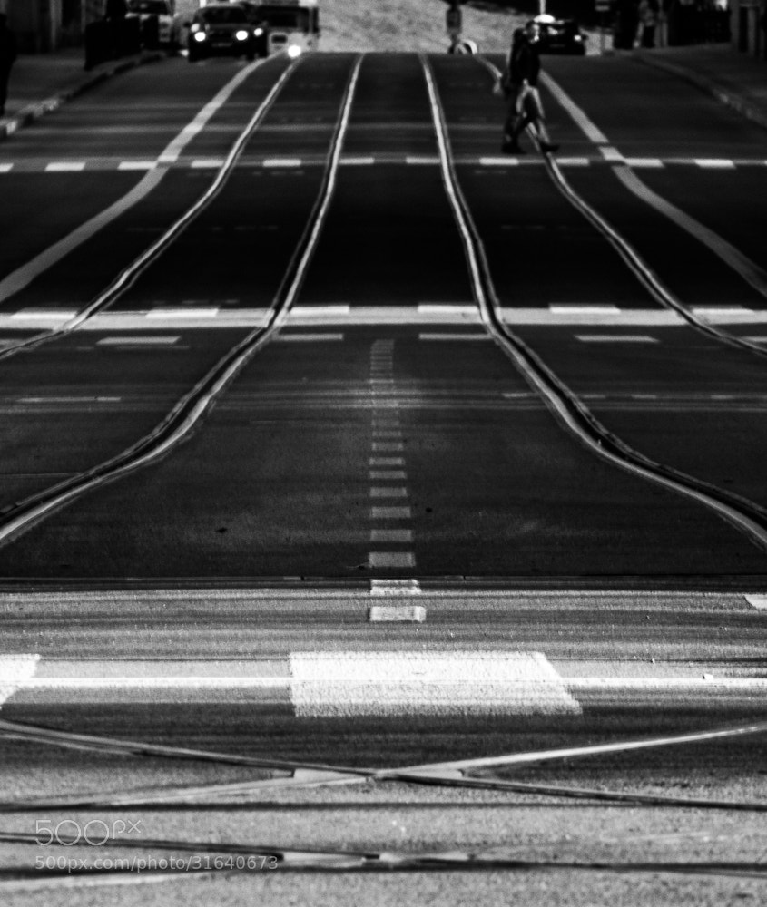 Photograph Long street. by Michal Jenčo on 500px