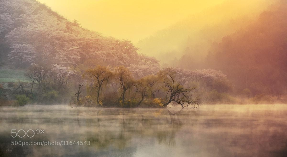 Photograph Water fog & Light by Eduardo choi on 500px