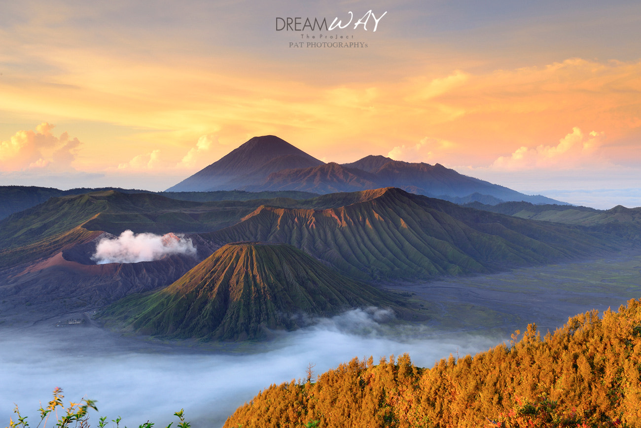 Photograph Bromo in My Dream by Pat Photographys on 500px