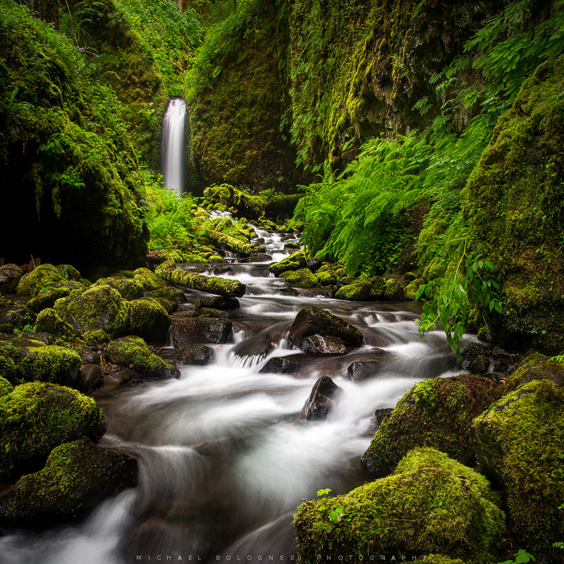 Photograph Falls of my Dreams  by Michael Bolognesi on 500px