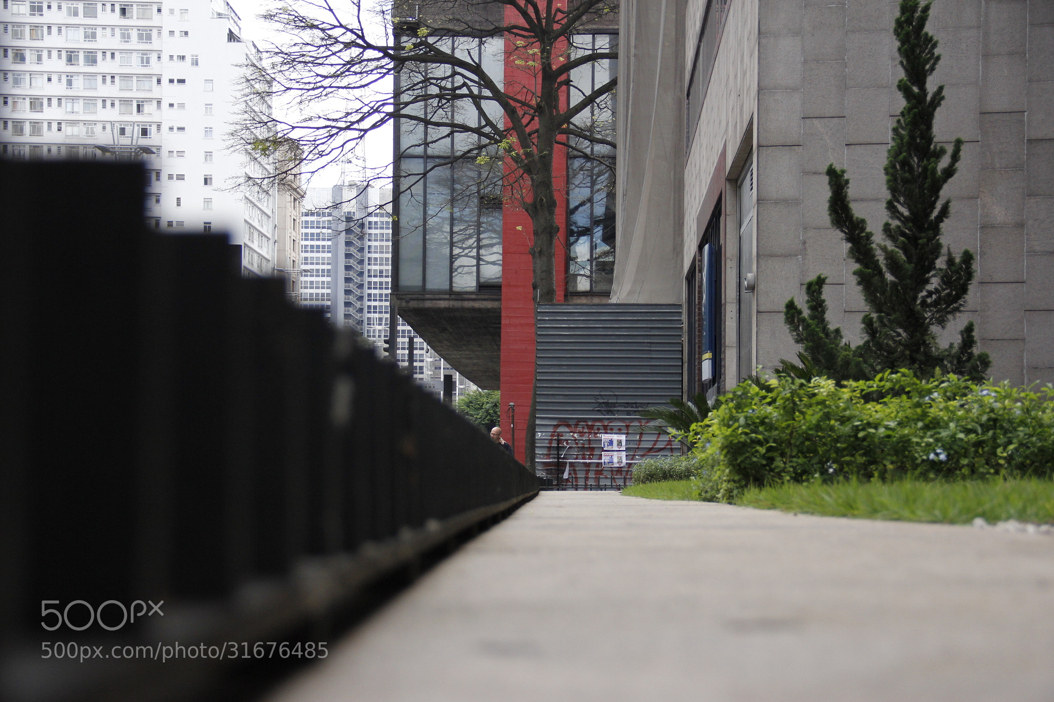 Photograph Masp by Daniel Antunes on 500px