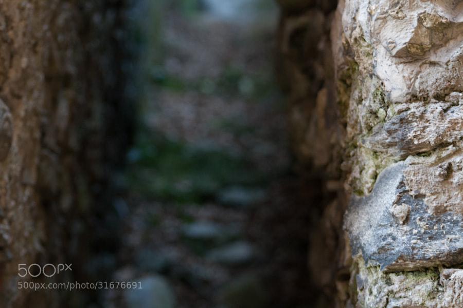 Photograph Bokeh by Francesco Franzetti on 500px