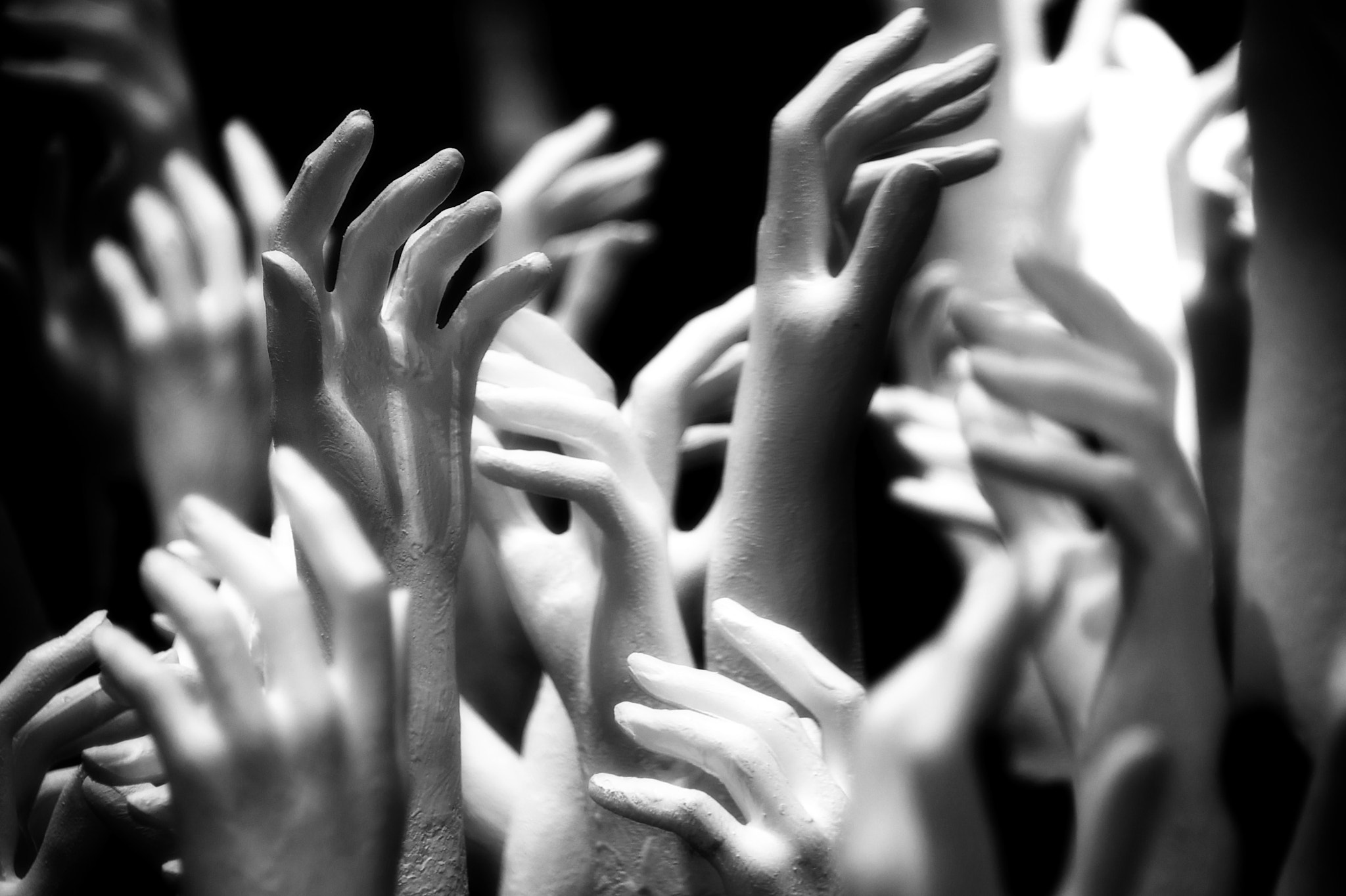 Photograph Many Hands by Craig Kirkwood on 500px