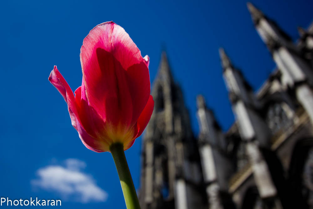 Photograph Alone in front of the abbey by Photokkaran PK on 500px