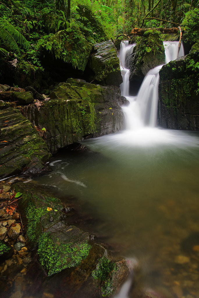 Photograph Yunque by Augusto Fidel on 500px