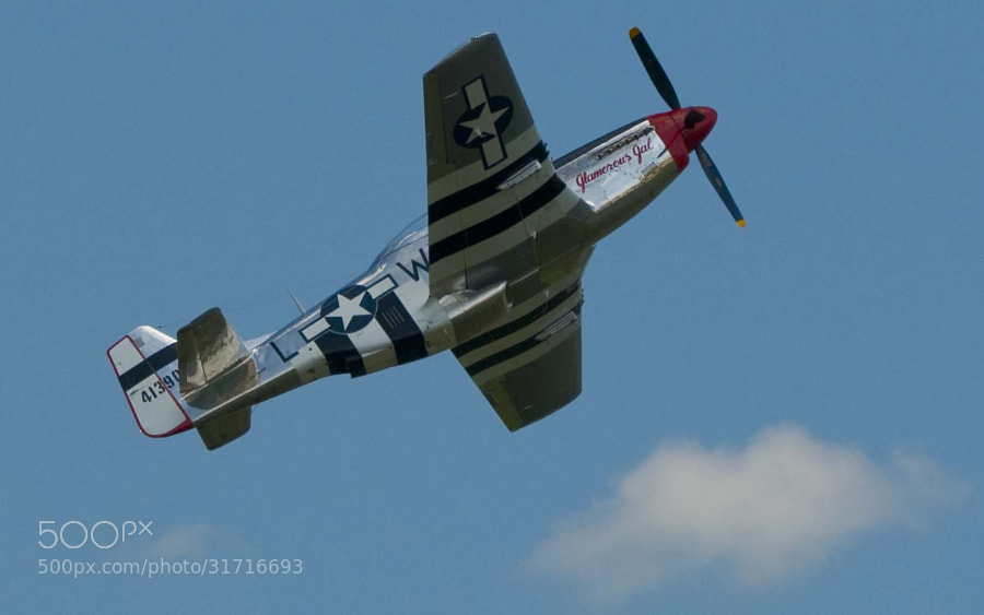 Fully restored P51 Mustang