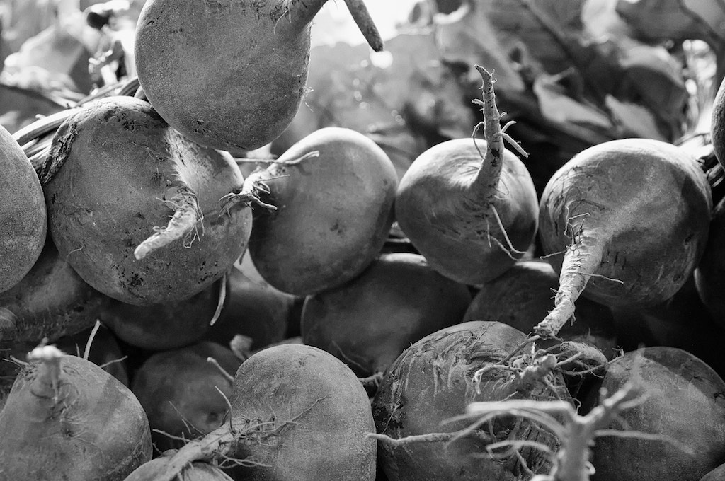 Photograph Beets by Brian Aldrich on 500px