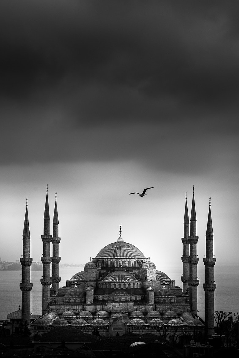 Photograph Blue Mosque by Coolbiere. A. on 500px