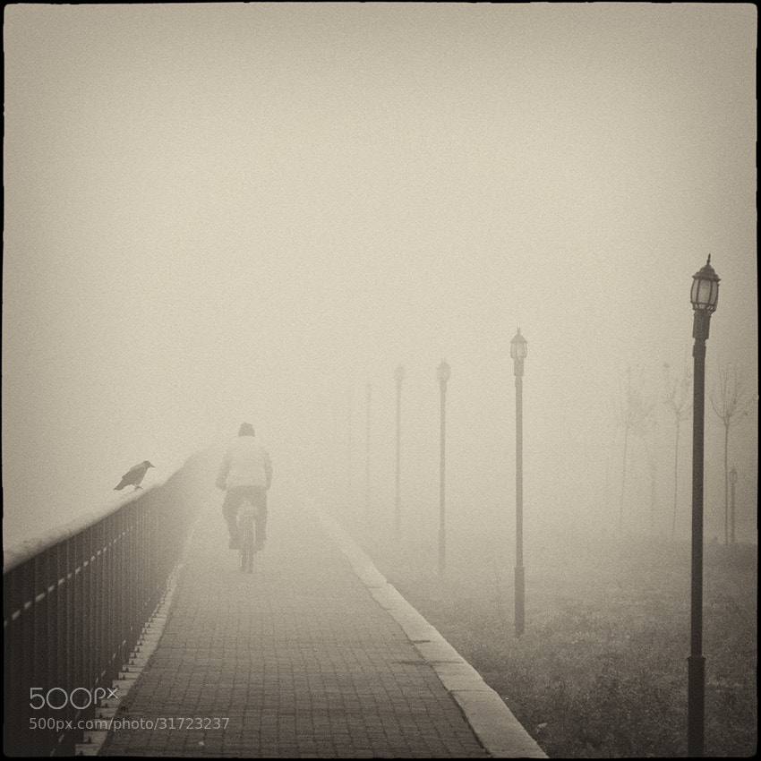 Photograph  rhythm ...  by Mladen Parvanov on 500px