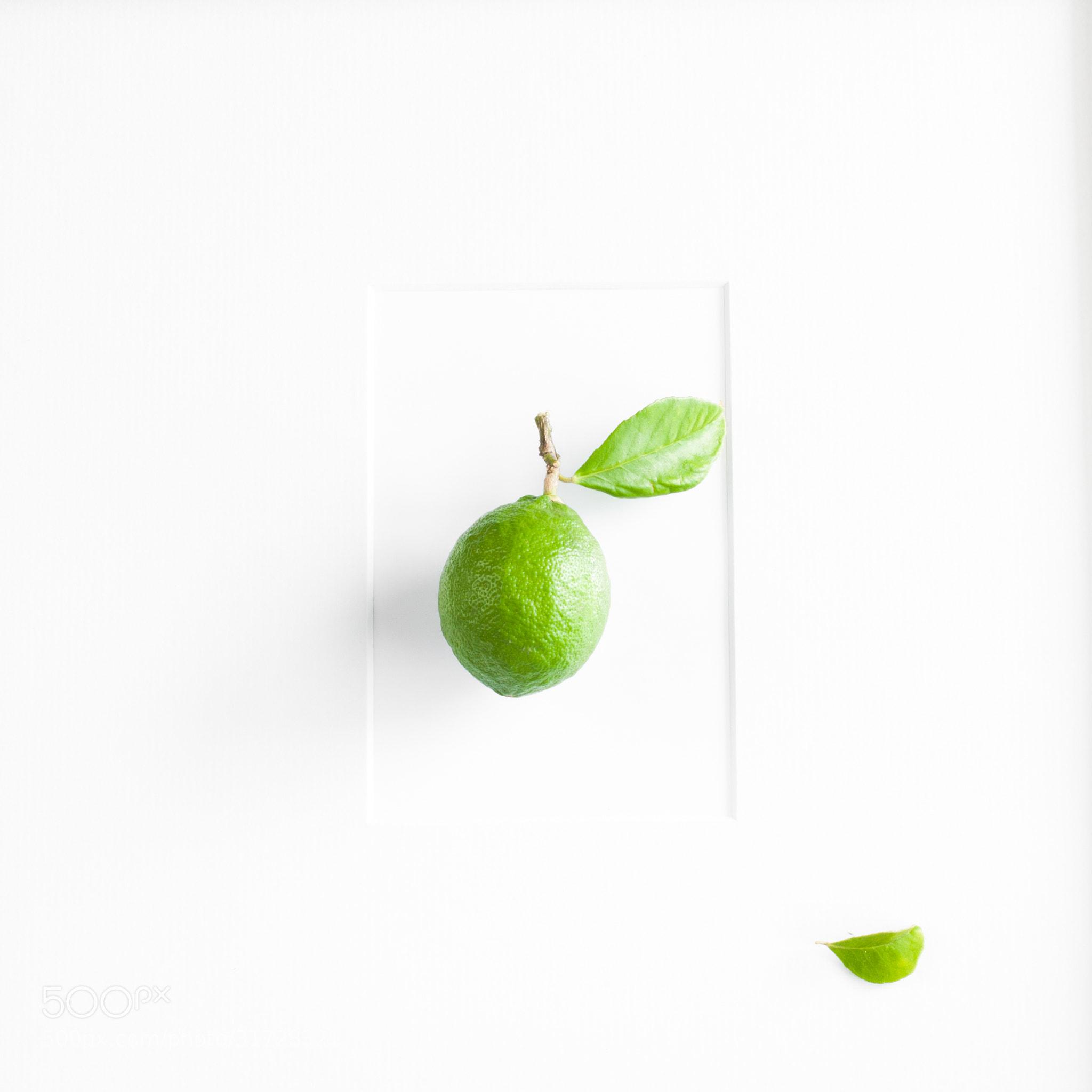 Photograph A Green Lemon - Framed by Constance Fein Harding on 500px